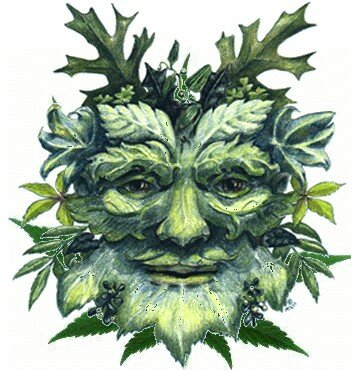 Greenman's Marijuana Seeds Search Garden